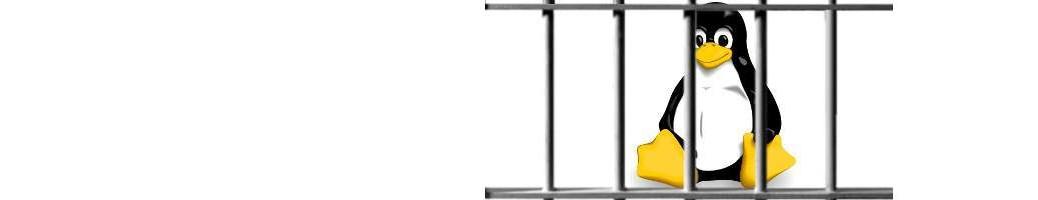 tux-jail-banner